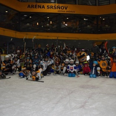 Deti na hokej