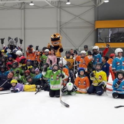 Deti na hokej 2017